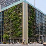 fazenda-urbana-em-toquio-pasona_4